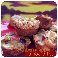 cranberry apple quinoa bites