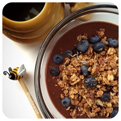 protein pudding and granola